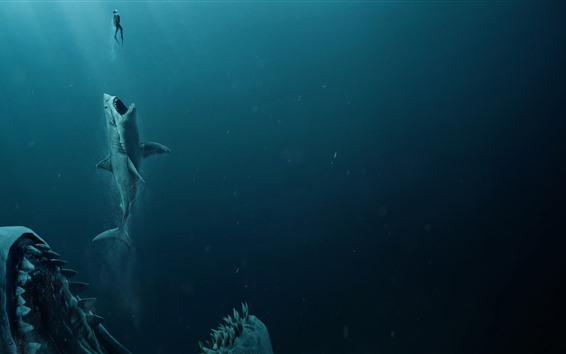 Wallpaper The Meg, shark, underwater