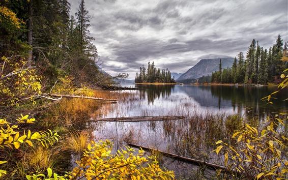 Papéis de Parede Árvores, montanhas, lago, console, outono