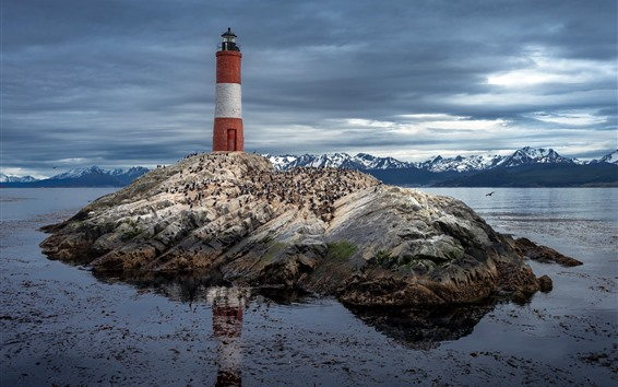 Papéis de Parede Argentina, Patagonia, farol, rochas, mar, pássaros