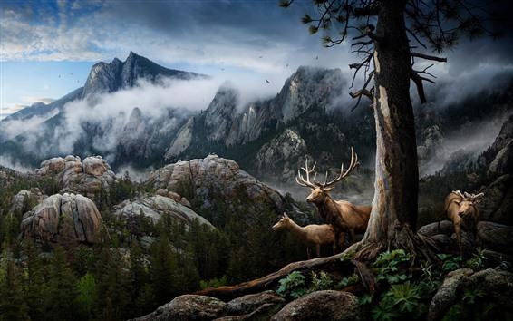 Wallpaper Deer, horns, mountains, trees, fog, birds