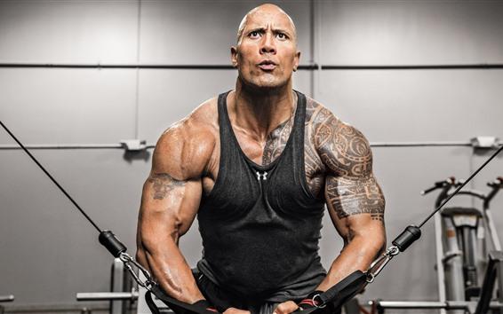 Papéis de Parede Dwayne Johnson, fitness, músculo