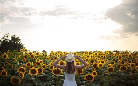 Wallpaper Many sunflowers, girl, back view, summer