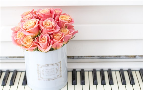 Wallpaper Pink roses, piano