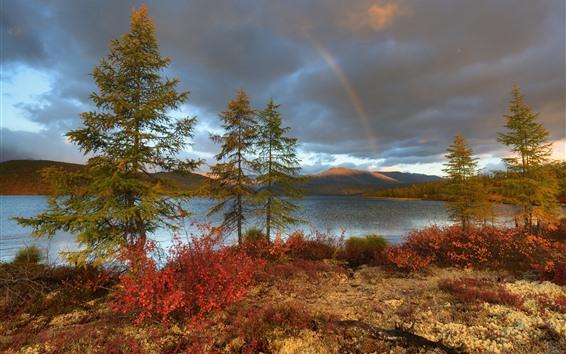 Papéis de Parede Arco-íris, árvores, lago, nuvens, natureza paisagem