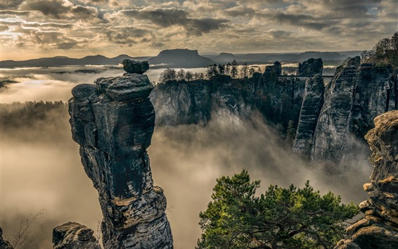 Wallpaper Saxon Switzerland, Elbe Sandstone Mountains, fog, morning, clouds