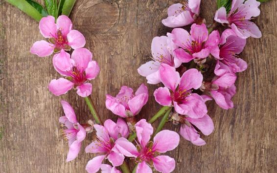 Fondos de pantalla Primavera, flores de melocotón rosado, tabla de madera