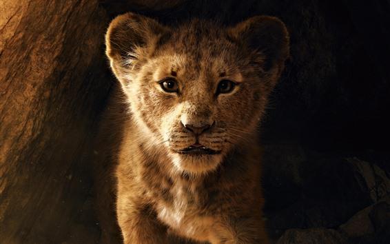 Wallpaper The Lion King 2, lion cub