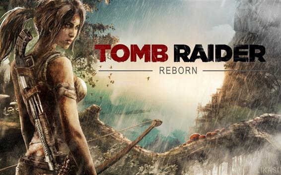 Wallpaper Tomb Raider Reborn