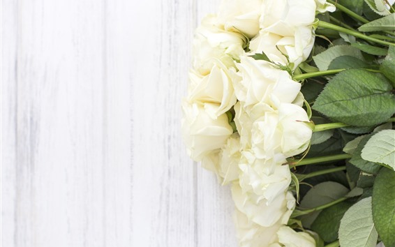 Wallpaper White roses, flowers, wood background