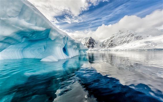 배경 화면 남극 대륙, 눈, 바다, 빙산
