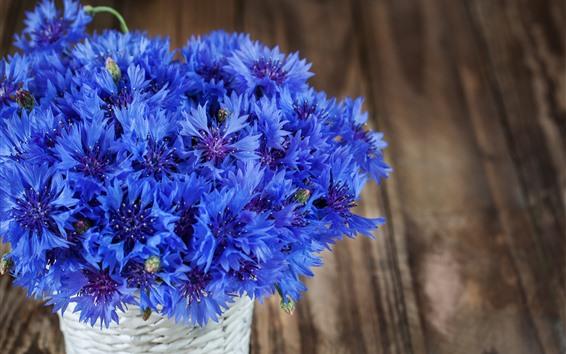 Wallpaper Blue cornflowers, bouquet