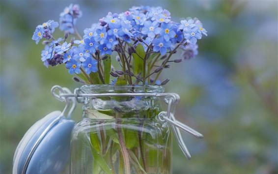 壁紙 忘れな草の花、小さな青い花、ガラス瓶