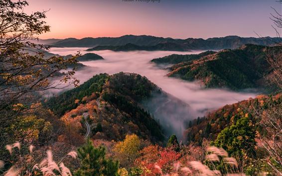 Papéis de Parede Japão, shiga prefecture, estrada, colinas, árvores, nevoeiro, manhã