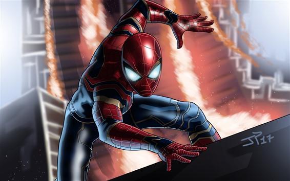 Wallpaper Spider-Man, DC Comic, superhero