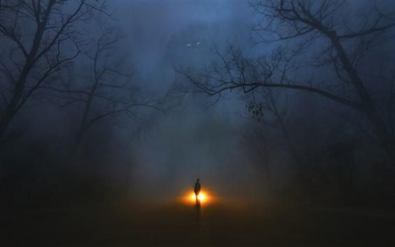 Papéis de Parede Árvores, nevoeiro, monstro, homem, noite