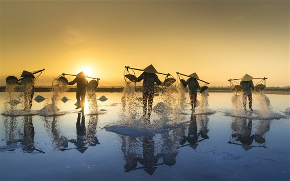 Wallpaper Vietnam, people, salt, morning, sun rays