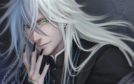 Fondos de pantalla Fantasía de cabello blanco hombre, ojos verdes.