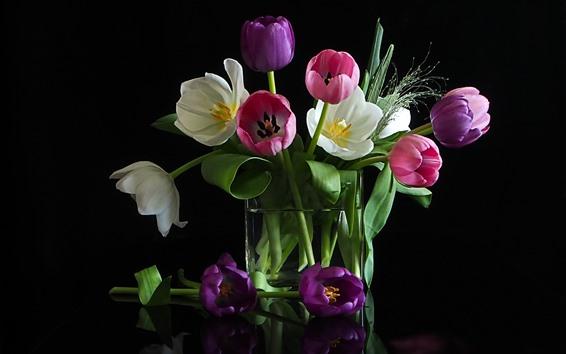 Papéis de Parede Flores tulipa branca, rosa, fundo preto