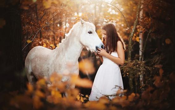 Wallpaper White skirt girl and white horse, forest