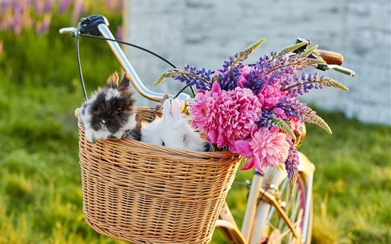 Wallpaper Bike, basket, rabbits, flowers