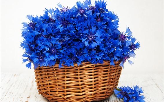 Wallpaper Blue flowers, cornflowers, basket