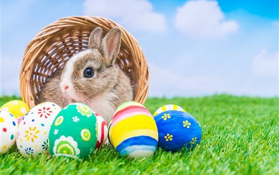 壁紙 カラフルなイースターエッグ、ウサギ、バスケット、緑の芝生