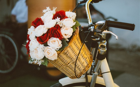 Wallpaper Colorful roses, basket, bike