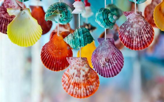 壁紙 カラフルな貝殻、装飾