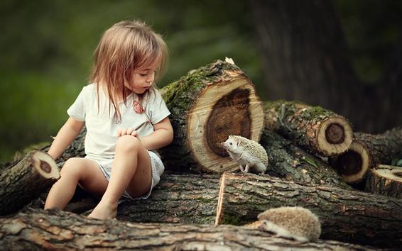 Обои Милая маленькая девочка и еж, друзья