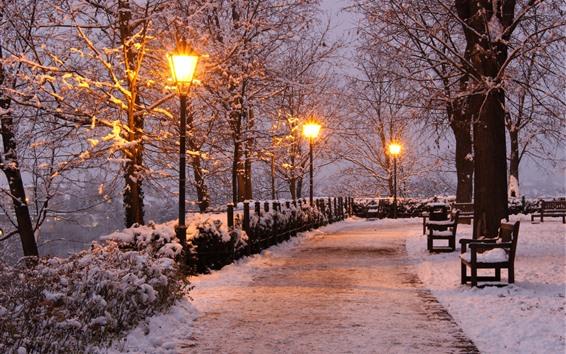 Обои Чехия, парк, деревья, снег, фонари, скамейка, зима, ночь