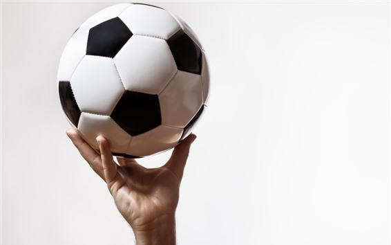 Fond d'écran Football, main