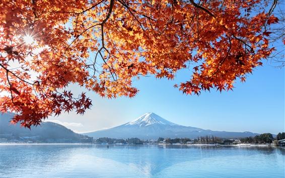 Wallpaper Fuji Mountain, red maple leaves, lake, autumn, Japan