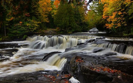 壁紙 ミシガン、ボンドフォールズ、川、木、秋、アメリカ