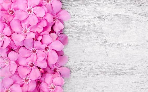 Wallpaper Pink petals flowers, wood board