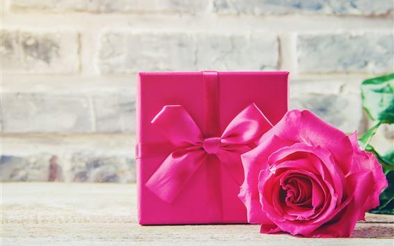 Papéis de Parede Rosa rosa, presente, romântico