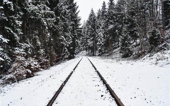 Fond d'écran Chemin de fer, arbres, neige, hiver