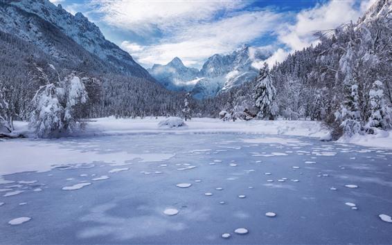 Papéis de Parede Eslovénia, lago jasna, montanhas, árvores, neve, inverno