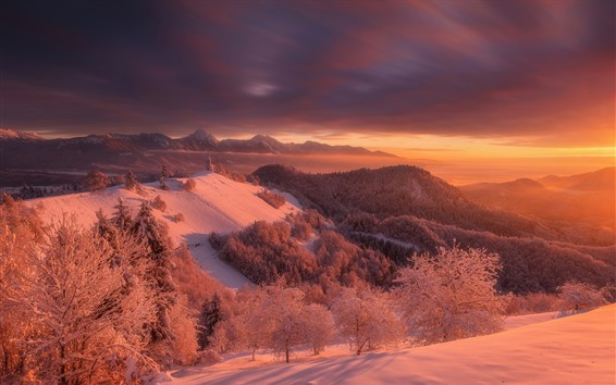 Fondos de pantalla Eslovenia, invierno, nieve, árboles, montañas, estilo rojo, atardecer, atardecer