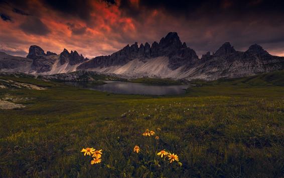 Fond d'écran Les Dolomites, lac, montagnes, fleurs jaunes