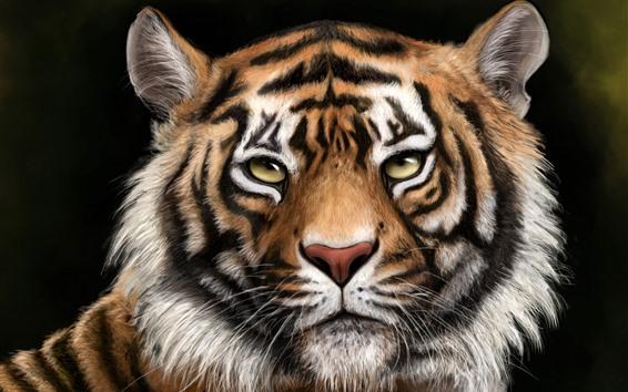 Обои Тигр, лицо, глаза, взгляд, животное