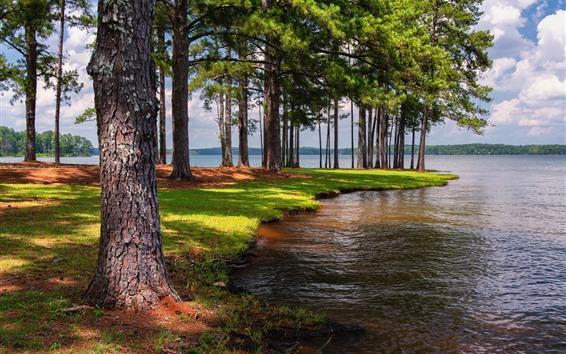 Обои Вест Пойнт Лейк, США, деревья, тень