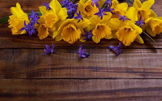 Papéis de Parede Narcisos amarelos e flores roxas