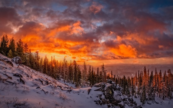 Wallpaper Beautiful winter, snow, trees, clouds, red sky, sunset