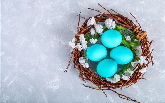 Fondos de pantalla Huevos de Pascua azules, nido