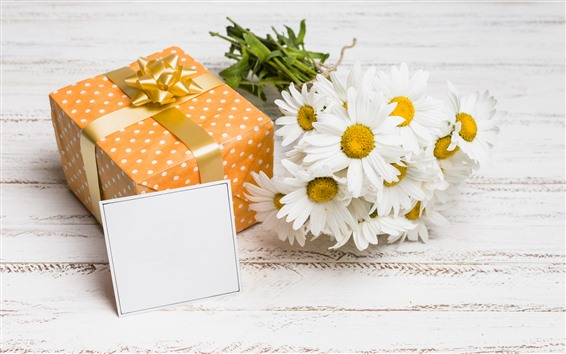 Wallpaper Gift, white chamomile flowers, romantic