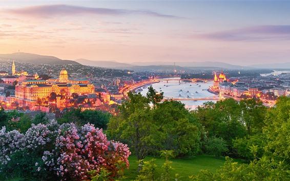 Fond d'écran Hongrie, budapest, fleurs, arbres, ville, rivière, lumières, crépuscule