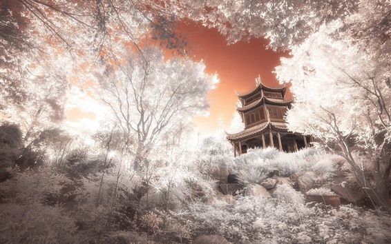 Wallpaper Japan, temple, trees, creative picture