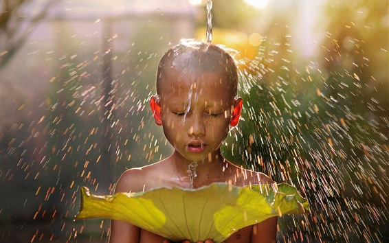 Fond d'écran Petit garçon, éclaboussure d'eau, feuille de lotus