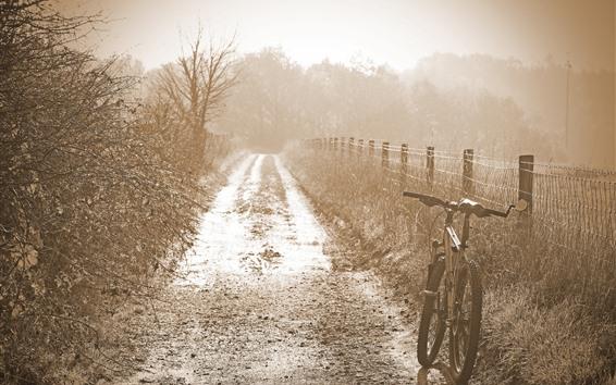 Wallpaper Morning, fog, bike, fence, grass, hazy