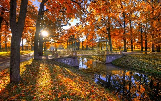 Обои Парк, деревья, красные листья, осень, мост, солнечные лучи, река